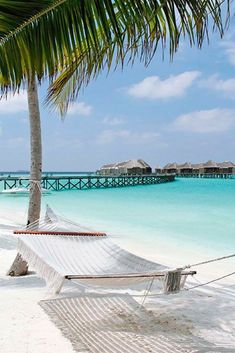 20 Most Beautiful Islands in the World - Travel Den Maldives. See our 20 Most Beautiful Islands this year!<br> 20 most beautiful islands in the world. From French Polynesia to the Caribbean, here are the best islands in the world to visit. Vacation Places, Dream Vacations, Vacation Spots, Places To Travel, Places To See, Travel Destinations, Holiday Destinations, Tropical Places To Visit, Vacation Food