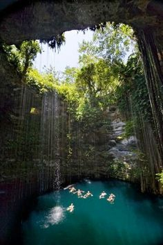 Images of Natural Swimming Pool in Chichen Itza,Mexico!