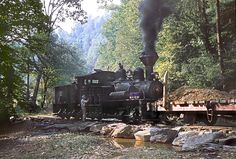 https://flic.kr/p/Mma6Lo | Elk River Coal & Lumber - Lilly Fork | Elk River Coal & Lumber engineer Ted Burdette oiling shay #19 while stopped at one of the water-crossings up Lilly Fork of Buffalo Creek, Clay county, West Virginia.  September 1960  The shay and the log flat had earlier worked for the Cherry River Boom and Lumber Company of Richwood in Nicholas county.  B&W version is here:  www.flickr.com/photos/130647200@N05/17150080862