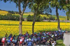 Le Tour de France 2014 Stage 16