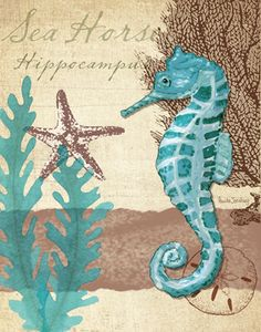 Add a turquoise seahorse!
