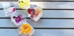 Egy kis virág ma is legyen körülötted, dobd fel hűsítő limonádéd virágos jégkockákkal