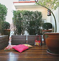 Live Fence : modèles, types, prix et 60 photos Murraya Paniculata, Garden Makeover, Tropical Houses, Porch Swing, Outdoor Furniture, Outdoor Decor, Planters, Home And Garden, Backyard
