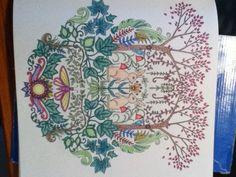#livrodecolorir #florestaencantada #tempoocioso #ocupandootempo #lapisdecor