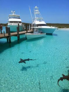 Exuma, Bahamas consists of over 360 islands or cays with crystal clear water everywhere. - 12 Places To Swim With The Clearest, Bluest Waters. Les Bahamas, Bahamas Honeymoon, Bahamas Vacation, Exuma Bahamas, Vacation Destinations, Dream Vacations, Vacation Spots, Vacation Places, Nassau