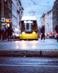 Shiny eyes.  #weilwirdichlieben  Abends dämmert es ganz Berlin dass Tageslicht doch eigentlich ganz dufte ist. Darf dann jetzt so langsam auch mal wieder mehr werden. Wobei - so Lichtreflektionen und -Schimmer finde ich ja auch ganz schön...  #officialfanofberlin #hackeschermarkt (#throwbackthursday zu letzter Woche)