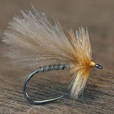 CDC Biot Caddis - Fly Fish Food -- Fly Tying and Fly Fishing