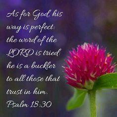Psalm 18:30 KJV