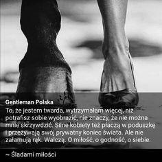 Polubienia: 3747, komentarze: 18 — Gentleman Polska (@gentleman_polska) na Instagramie Instagram
