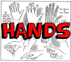 Learn How to Draw Hands with Drawing Lesson & Hands Positions Reference Guide « How to Draw Step by Step Drawing Tutorials