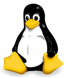 5 Advanced Linux Distributions you should try