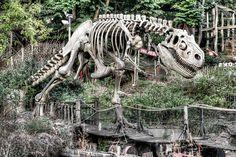 T-Rex at an abandoned amusement park Abandoned Theme Parks, Abandoned Amusement Parks, Abandoned Buildings, Abandoned Places, Abandoned Castles, Abandoned Mansions, Most Haunted, Haunted Places, Amusement Park Rides