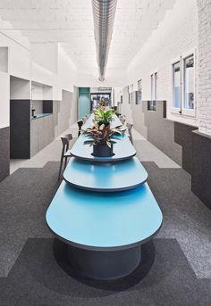 Studio Änimal, José Hevia · Office #2