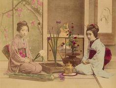 Por volta do século 18, surgiram as primeiras gueixas femininas.