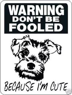 Mini schnauzer security aluminum sign warning dog 3328