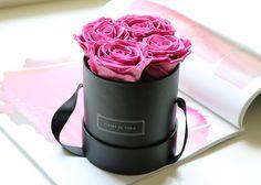 91 Best Fleurs Paris Images Beautiful Flowers Flower Market