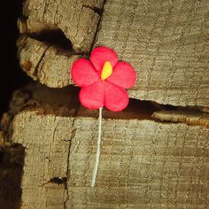 Miniature Paper Flower 1.5cm  Red  100 Craft365.com ~US$4.90