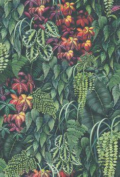 46cdd691df6 FOLIUM | Osborne & Little Downstairs Loo, Osborne And Little Wallpaper,  Wall Wallpaper,