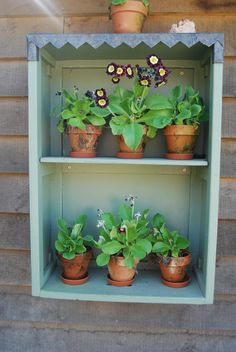 anyone can make an auricular theatre out of an old draw.....