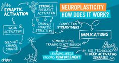 How does neuroplasticity actually work? This article explains in more detail, helping us understand how we can change the brain and build resilience. Neuroplasticity, Neuroscience, Writing Practice, Writing Skills, Smile Sciences, Nmda Receptor, White Matter, Converse, Brain Science
