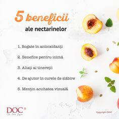Nectarinele, surorile mai exotice ale piersicilor, nu sunt numai gustoase, ci și extrem de sănătoase. Se numără printre fructele mele preferate. De ce? Ți-am povestit pe-ndelete, în articolul de pe doc.ro. Diet And Nutrition, Mai, Metabolism, Cantaloupe, Food, Essen, Meals, Yemek, Eten