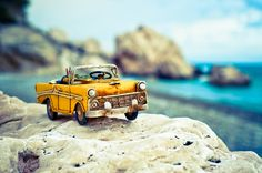 Tilt Shift Photography, Cute Photography, Adventure Photography, Fruit Photography, Macro Photography, Creative Photography, Cool Pictures For Wallpaper, Love Wallpaper Backgrounds, Cute Wallpapers