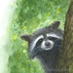 #Peeping #Raccoon #watercolour