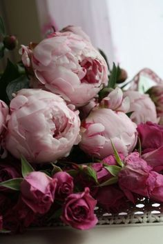 Peonies and roses, love it!!