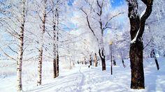 winter mac backgrounds