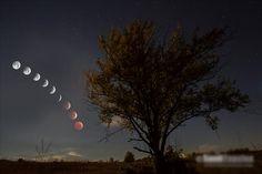 Lunar eclipse in Madison