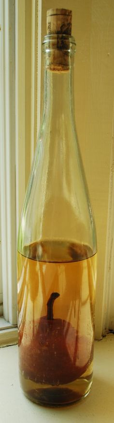Homemade Pear Brandy / Liquor - going to do this during this next growing season.  Going to start saving bottles now!
