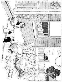 Animal Coloring Pages - 3