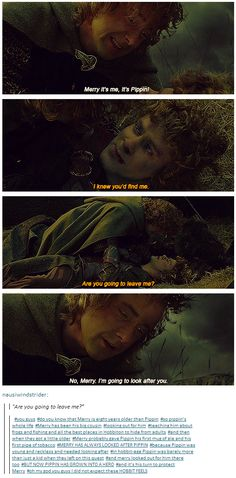 """""""No, Merry, I'm going to look after you.""""  For Pippin's whole life, Merry has been his big cousin, looking out for him, teaching him about frogs and fishing and all the best places in Hobbiton to hide. MERRY HAS ALWAYS LOOKED AFTER PIPPIN because Pippin was young and reckless and needed looking after. In hobbit-age Pippin was barely more than just a kid when they left on this quest, and merry looked out for him there too. BUT NOW PIPPIN HAS GROWN INTO A HERO and it's his turn to protect…"""