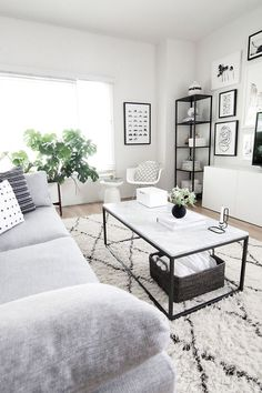 Living room decor ideas - Monochrome grey and white transitional style living room with metallic black accents.