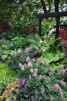 Shade garden border, astilbes, hostas, heucheras (coral bells), ferns, hydrangeas