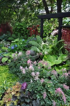 Shade garden border, astilbes, hostas, heucheras (coral bells), ferns, hydrangeas