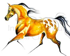 Buckskin Appaloosa Horse Art Painting Print Jill by JillClaireArt, $28.00