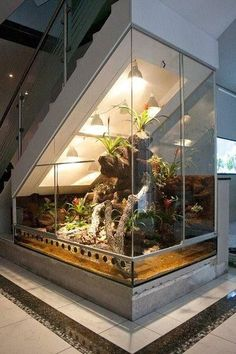 Paludarium under a staircase or under sloping ceilings. The Hoppe-Terrarienbau-Exclusive solves every difficult terrarium construction. Paludarium under a staircase or under sloping ceilings. The Hoppe Terrar . Aquarium Design, Home Aquarium, Aquarium Ideas, Aquarium Fish Tank, Fish Tank Wall, Conception Aquarium, Paludarium, House Stairs, Garden Stairs