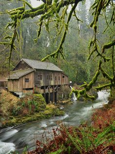 """Cedar Creek Grist Mill"" by pixelvision01 on Flickr - This is Washington Cedar Creek Grist Mill, Washington Woodland, Washington, USA on a rainy winter day."