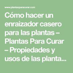 Cómo hacer un enraizador casero para las plantas – Plantas Para Curar – Propiedades y usos de las plantas medicinales