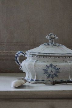 Beautiful soup tureen