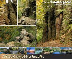 Bazaltorgonák - Szent György-hegy Trunks, India, Plants, Drift Wood, Goa India, Tree Trunks, Plant, Planets, Indie