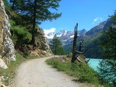 Oggi tutte #twitpic made in Italy! #buongiorno anche dalla Valle d'Aosta e da tutti i suoi colori