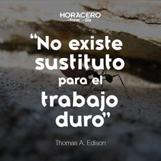 """""""No existe sustituto para el trabajo duro"""" Thomas A. Edison #Frases #FrasedelDía"""