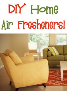 BIG List of DIY Home Air Fresheners! ~ from TheFrugalGirls.com ~ you'll love these creative air freshener ideas and natural tricks to keep your house smelling great! #thefrugalgirls