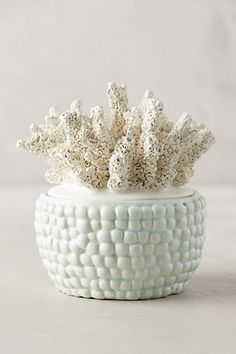 Anthropologie EU Illume Coral-Topped Candle