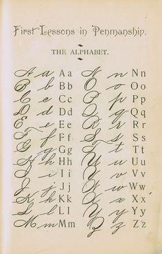 1895 School Primer Penmanship Page with cursive alphabet Alphabet A, Cursive Fonts Alphabet, Handwritten Letters, Beautiful Handwriting Alphabet, Letters In Cursive, Tattoo Lettering Alphabet, Fancy Handwriting, English Handwriting, Old Letters