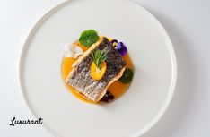 Luxurant Dublin brings you the Top-Ten Fine Dining Restaurants in Dublin with Irish and International Cuisine for a Real Luxury Experience. Chapter One Restaurant, Restaurants In Dublin, Tasting Menu, Trotter, Food Items, Fine Dining, Irish, Succulents, Pork