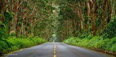 Enjoy, Inilah Kumpulan Foto Jalan Raya Terindah di Dunia