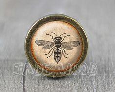 Bee  Vintage Antique Bronze Dresser Knobs Cabinet door jade4wood